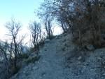 Mt_Lowe_118