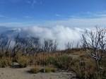 San_Gabriel_Peak_168