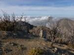San_Gabriel_Peak_185