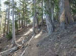 Dawson Saddle Trail