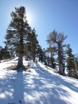 Dawson_Saddle_Snow_016