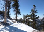 Dawson_Saddle_Snow_019