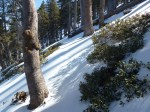 Dawson_Saddle_Snow_029