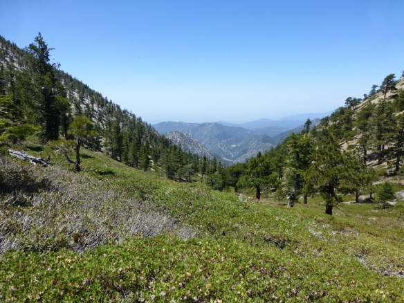 Northwest view from saddle between Telegraph Peak and Thunder Mountain