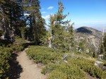 PCT: Mt. Baden Powell to JCT Dawson Saddle (10-1-2011)