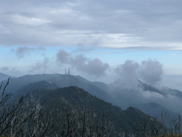View east from San Gabriel Peak toward Mt. Wilson.