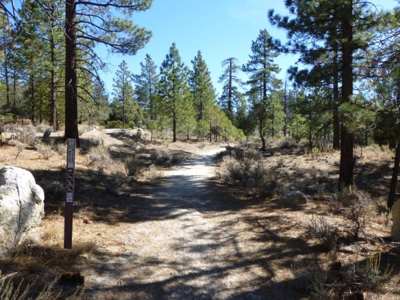 View from Horse Flats Campground heading toward the Silver Moccasin Trail.