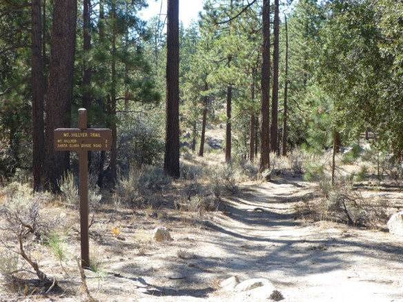 Mt. Hillyer Trailhead from Horse Flats