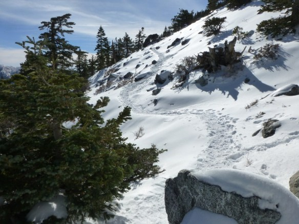A good thing about so many people hiking this trail in snow is the trail is made clear by those who arrive early.