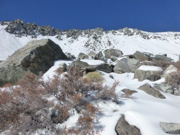 Looking up at the ridge from the base of Baldy Bowl.