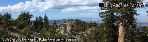 cropped-pacific-crest-trail_hdr.jpg