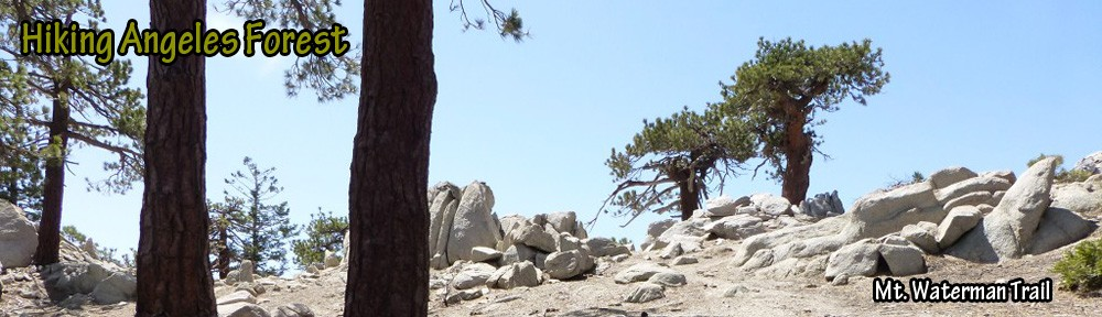 Hiking Angeles Forest