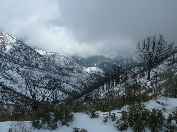View toward Mt. Wilson (blocked by clouds) from Inspiration Point.