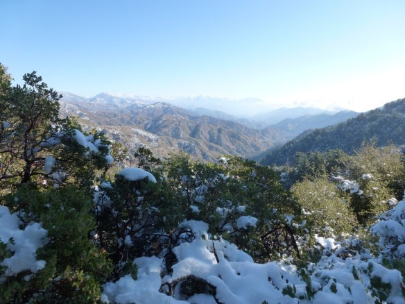 View looking out toward Mt. Baldy from the San Gabriel Peak Trail.