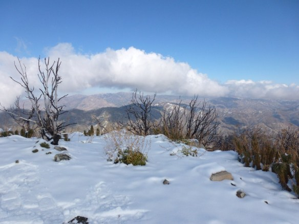View north into the San Gabriel Mountain from the peak.