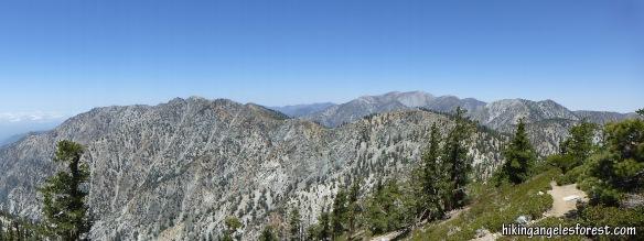 Cucamonga Peak Trail