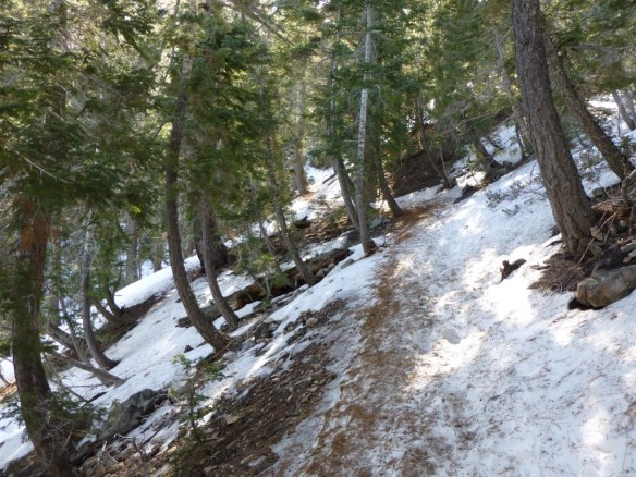 Icy snow on the Pacific Crest Trail between Islip Saddle and Little Jimmy Campground.