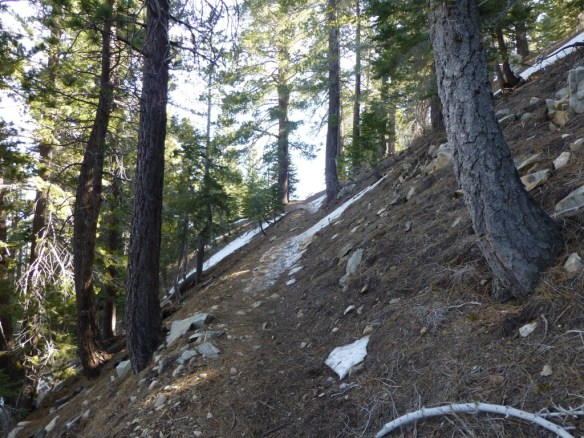 Pacific Crest Trail between Islip Saddle and Little Jimmy.