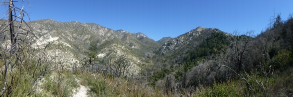 View up Bear Canyon looking toward Mt. Markham's long flat peak with San Gabriel Peak and Mt. Disappointment to the left. (click to enlarge).