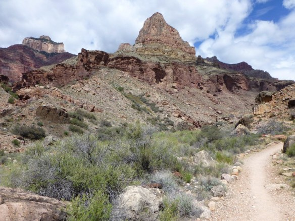 The sculptural nature of the landscape as seen along the North Kaibab Trail below Cottonwood Campground.