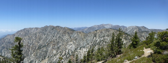 View toward Mt. Baldy from the Cucamonga Peak Trail. (click to enlarge)