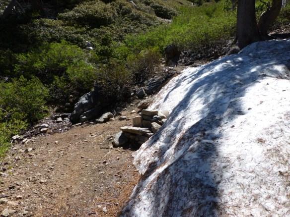 Snow next to Limber Pine Springs (June 2, 2013)