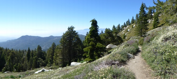Trail between Fuller Ridge and Little Round Valley.