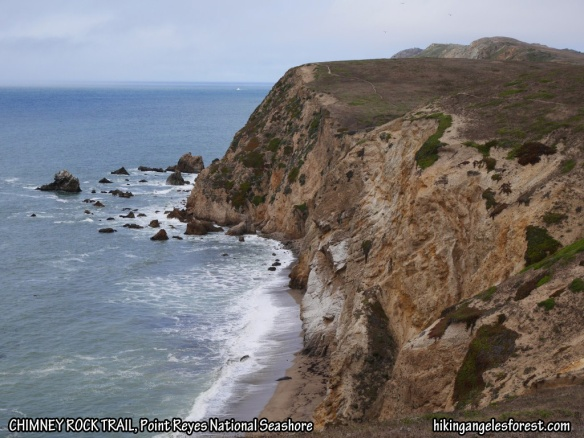 View from Chimney Rock, Point Reyes National Seashore.