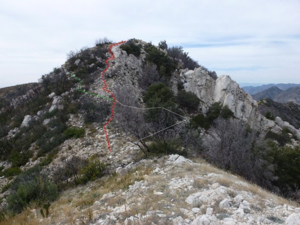 Paths up steepest part of Brown Mountain use trail. Red is easiest.