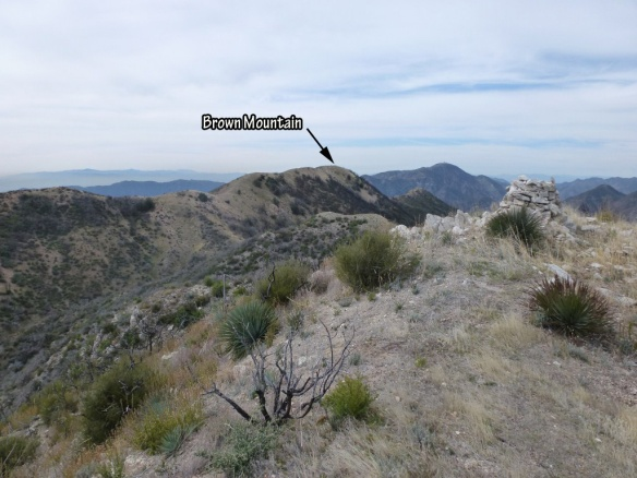 View toward Brown Mountain from the top of the steepest part of the trail.