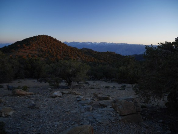 View toward the Eastern Sierras from Grandview Campground--a very short hike up from the campsites.