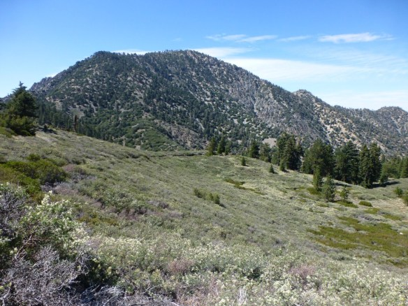View from the Pacific Crest Trail close to the trailhead as Islip Saddle toward Mt. Williamson.