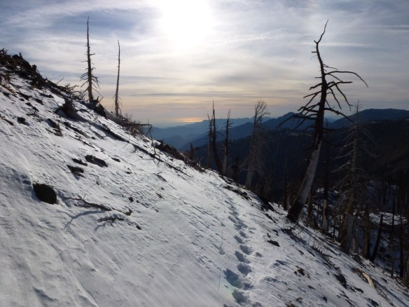 Pacific Crest Trail between Windy Gap and Mt. Hawkins in November 2011.