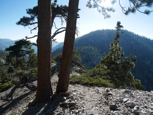 View toward Pallett Mountain from the Pleasant View Ridge use trail west of Mt. Williamson.