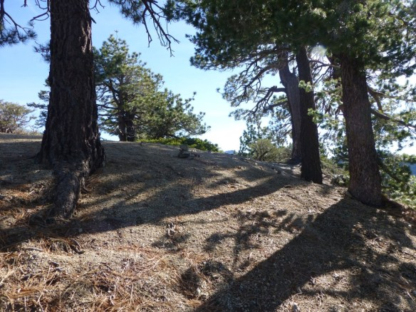 View toward JCT of Pleasant View Ridge Trail from the PCT starting from Angeles Crest HWY.