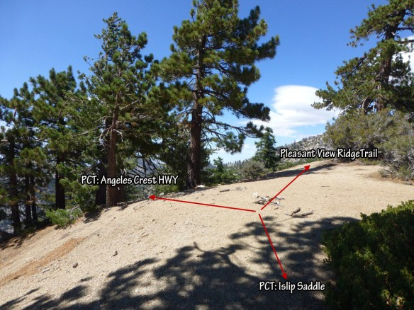 T-intersection of Pacific Crest Trail and Pleasant View Ridge Trail.