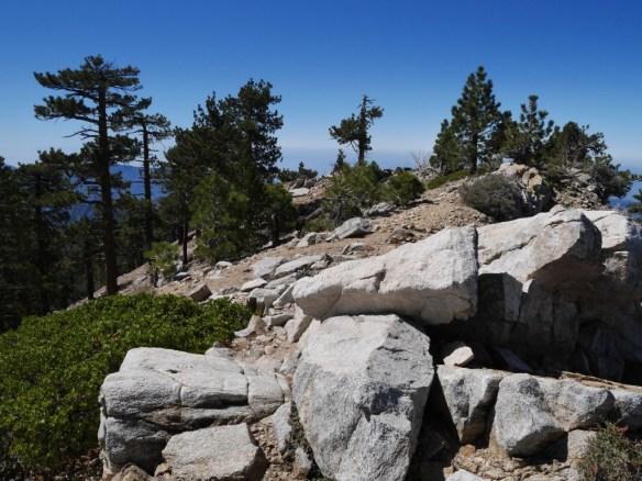 Middle Mt. Hawkins, June 2014.