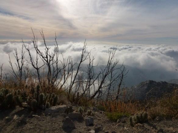 San Gabriel Peak, December 2011.