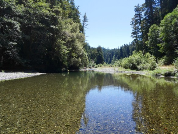 The wide gravel channel of Redwood Creek, Redwood National Park