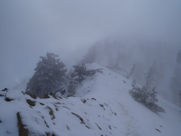 Heavy mist from the clouds makes the Wally Waldron Tree and Mt. Baden-Powell barely discernible.