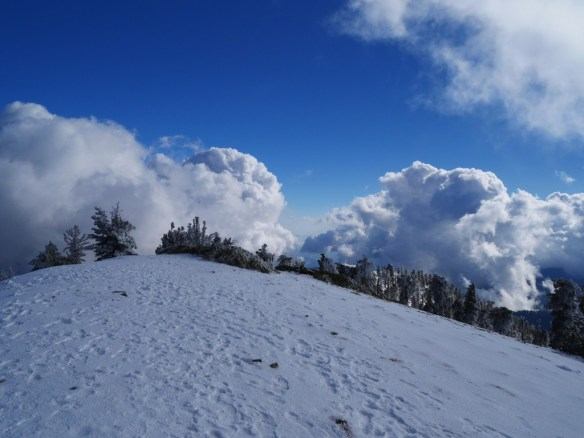 View looking south from Mt. Baden-Powell.