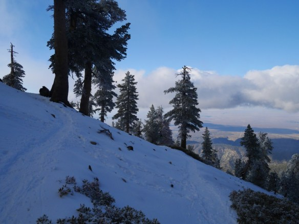 With the exception of a small stretch along a ridge, numerous switchbacks connect Vincent Gap to Mt. Baden-Powell.