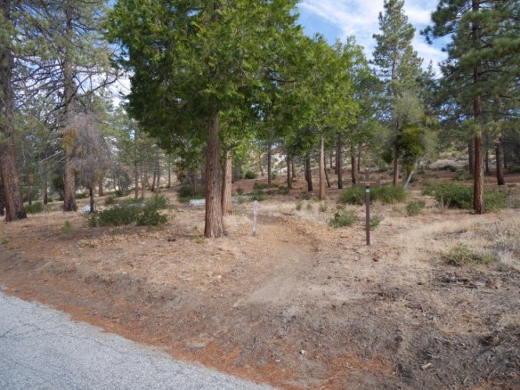 Silver Moccasin Trailhead near Little Pines Loop across from parking.