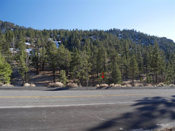 View of Trailhead leading down to Three Points from across Angeles Crest Highway at continuation of PCT.