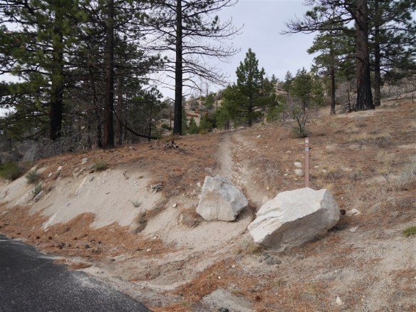 PCT Trailhead at Angeles Crest Highway Crossing at mile marker 54.10 heading up toward Cloudburst Summit.