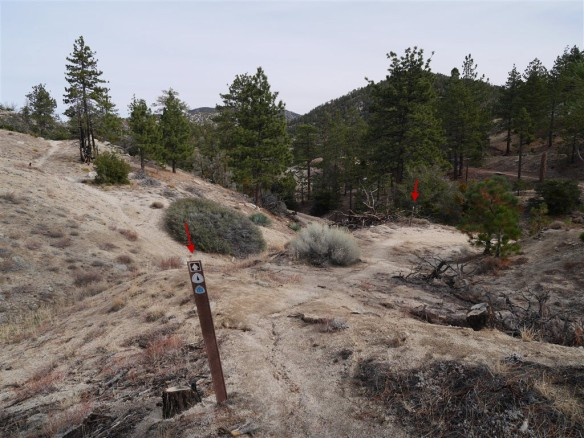 Use Trail crossing as seen coming up from mile marker 54.10