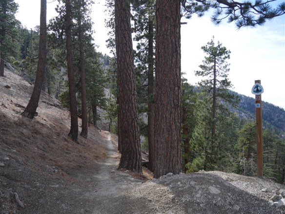 View looking down trail at Angeles Crest Highway from Cloudburst Summit heading toward Three Points.