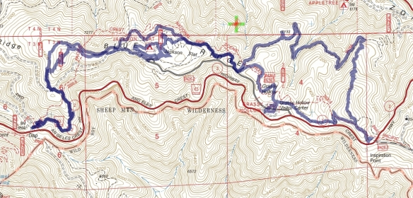 Hike #029 (PCT) track map using Backcountry Navigator (US Forest Service-2013 map) from my phone.
