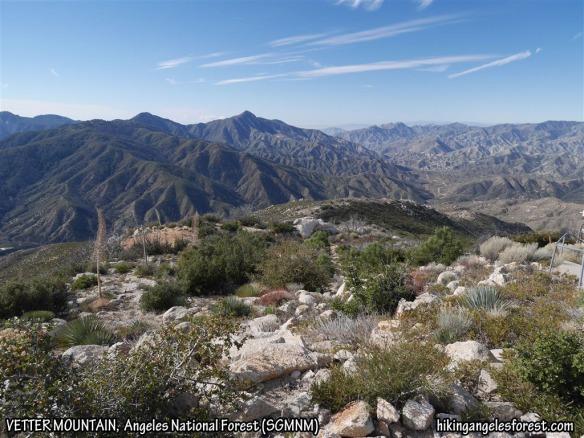 View from Vetter Mountain toward Strawberry Peak.