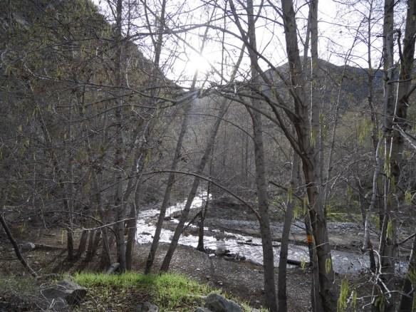 San Gabriel River in Lower San Gabriel Canyon